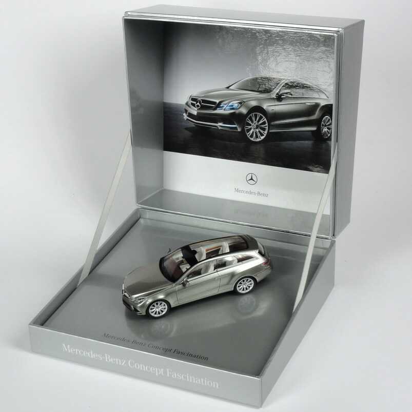 1:43  Mercedes-Benz Concept Fascination tierra-del-fuego-grey-bright (Autosalon Paris 2008) (MB)